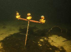 03118-enten-im-loch-w